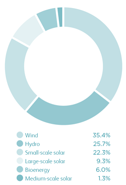 Renewable generation by technology type